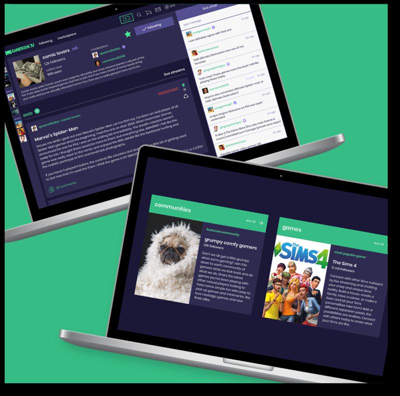 Gamerzon.tv Custom Webpage Development Laptop Screens