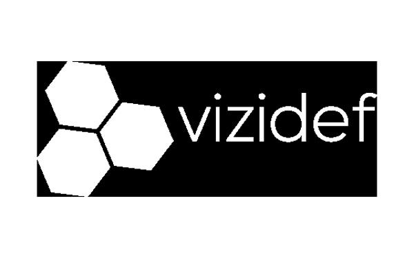 Vizidef Logo